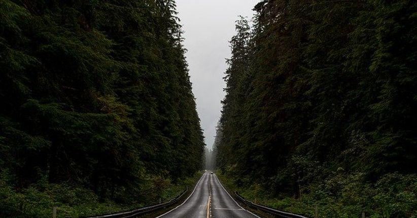 Estradas em patrimônios ambientais