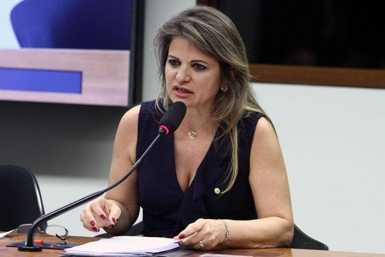 Reunião Extraordinária. Dep. Flávia Morais (PDT - GO)
