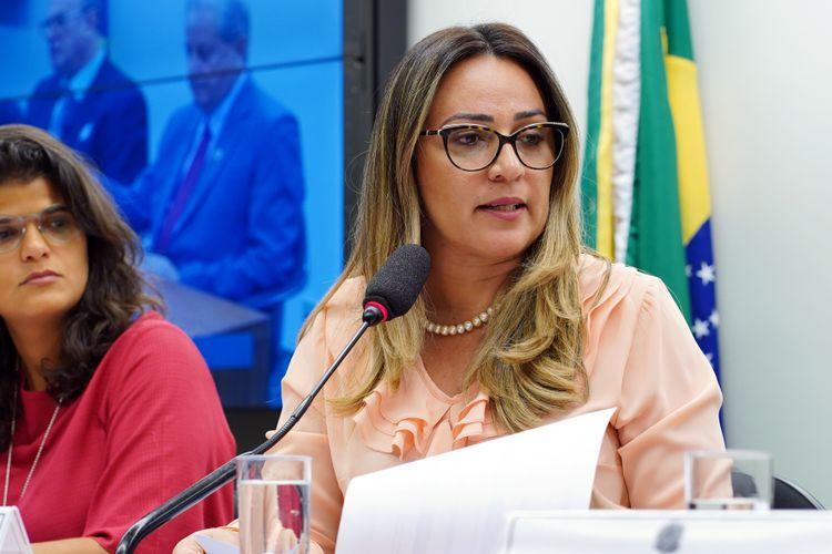 Audiência pública sobre o decreto 9.759/2019 e a Continuidade do CNDI. Dep. Rejane Dias (PT-PI)