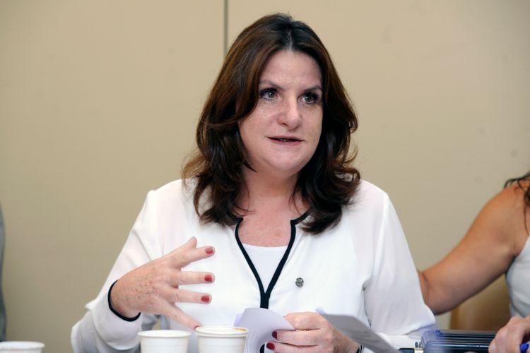 Reunião Ordinária para deliberação do Plano de Trabalho; Escolha dos Relatores Setoriais; Discussão e votação do Plano de Trabalho. Dep. Carmen Zanotto (CIDADANIA - SC)