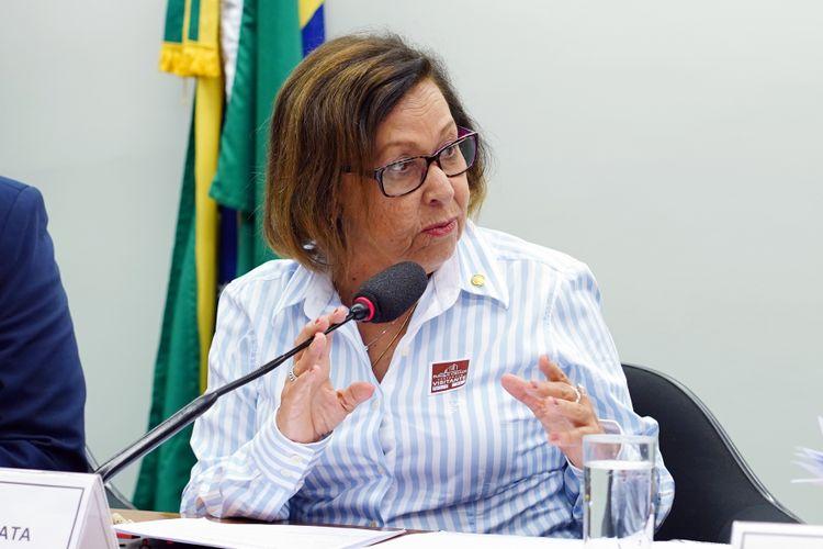 Audiência pública sobre o decreto 9.759/2019 e a Continuidade do CNDI. Dep. Lídice da Mata (PSB - BA)