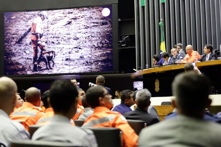 Homenagem às vítimas, aos militares do corpo de bombeiros de Minas Gerais e demais profissionais que socorreram e resgataram as vítimas do desastre de Brumadinho/ MG