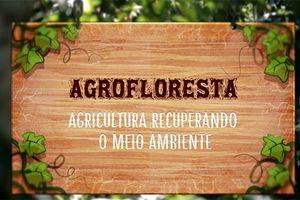 Capa - Agrofloresta - agricultura recuperando o meio ambiente