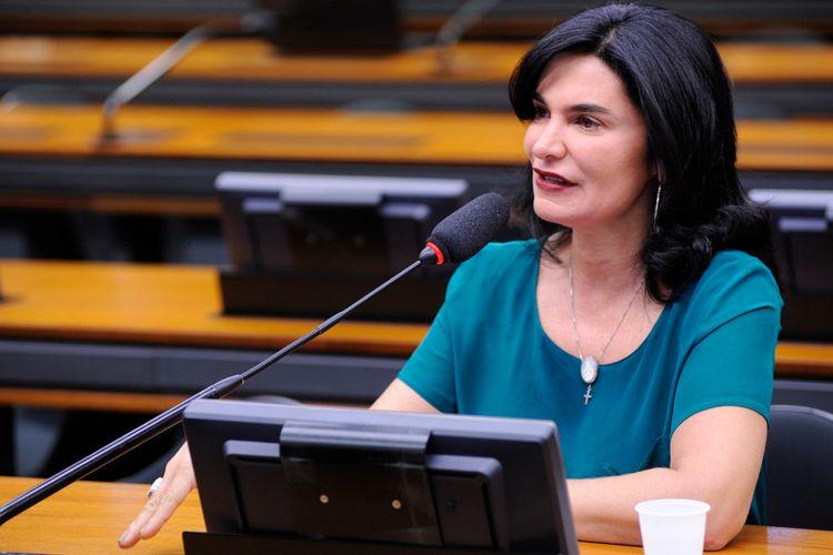 Audiência Pública e Reunião Ordinária. Dep. Simone Morgado (PMDB - PA)