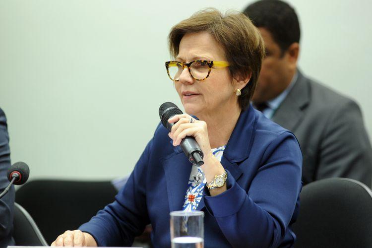 Reunião ordinária para discussão e votação do relatório apresentado pelo dep. Nilson Leitão (PSDB-MT). Dep. Tereza Cristina (PSB-MS)