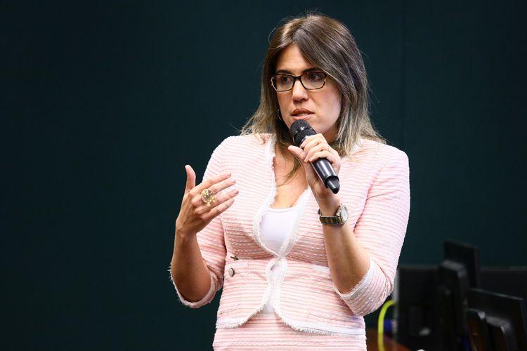 Audiência pública para instruir o colegiado sobre a apreciação de matéria constante do Projeto de Lei nº 3875/2012. Chefe da Assessoria Jurídica da Secretaria de Direitos Humanos da Presidência da República (SDH), Aline Albuquerque Santana