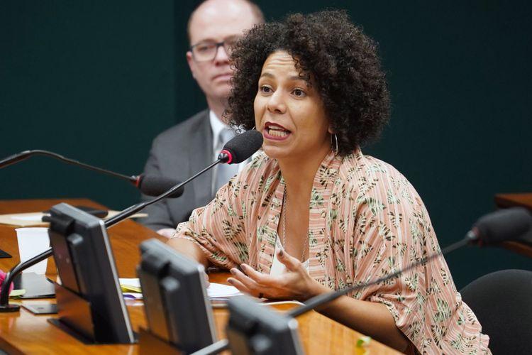 Audiência pública sobre as perspectivas de atuação futura do Ministério da Mulher. Dep. Áurea carolina (PSOL - MG)
