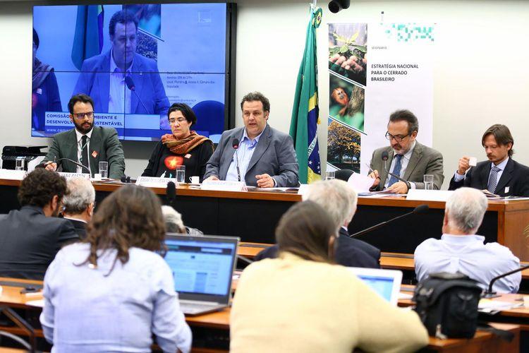 Seminário - Estratégia Nacional para o Cerrado Brasileiro