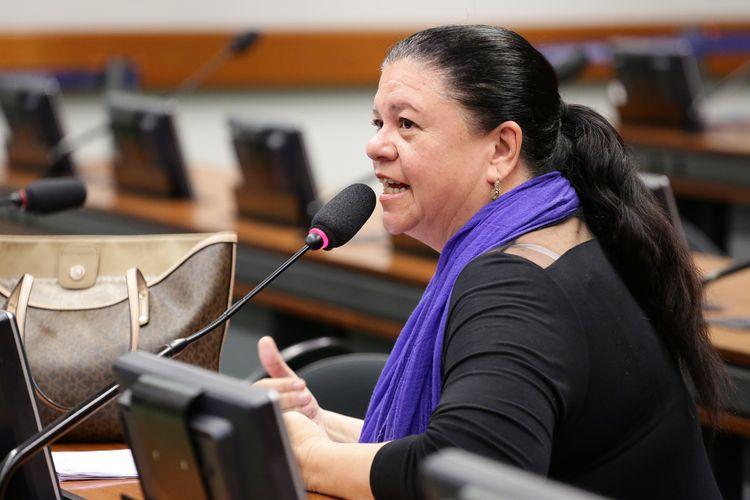 Reunião Ordinária. Dep. Laura Carneiro (PMDB-RJ)