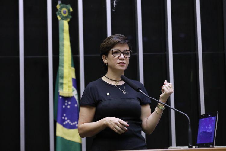 Deputada Alê Silva