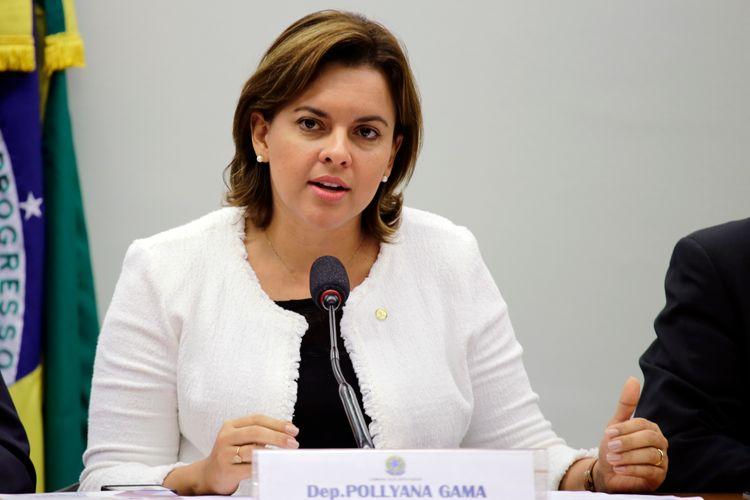 Audiência Pública e Reunião Ordinária. Dep. Pollyana Gama (PPS - SP)