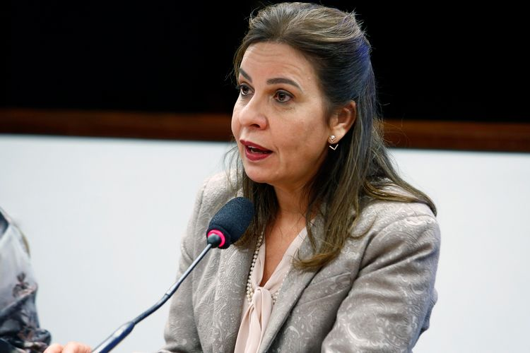 Reunião Ordinária. Dep. Raquel Muniz (PSD - MG)