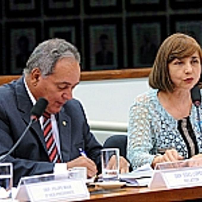 Audiência Pública. Secretária de Orçamento Federal do Ministério do Planejamento, Orçamento e Gestão (MPOG), Célia Corrêa