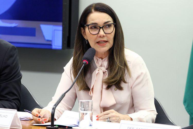 Audiência pública sobre as mudanças na legislação penal e processual penal. Dep. Margarete Coelho (PP - PI)