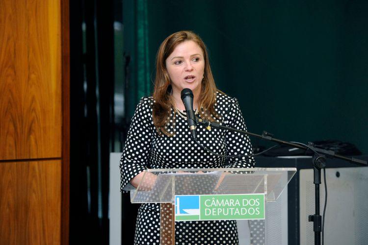 """Encontro """"O Trabalho da ONU Mulheres – diálogo e cooperação com parlamentares brasileiras"""".Dep. Leandre (PV - PR)"""