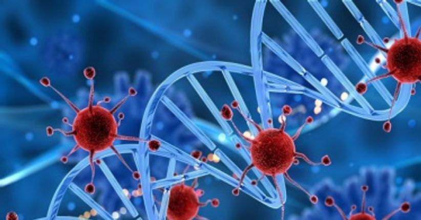 Genomas variantes de coronavírus