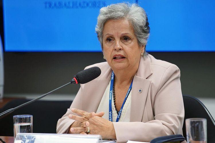 Audiência pública sobre os impactos dos agrotóxicos nas cidades. Diretora de Qualidade Ambiental do Instituto Brasileiro do Meio Ambiente e dos Recursos Naturais Renováveis - IBAMA, Jacimara Guerra Machado