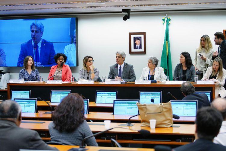 Audiência pública sobre os Impactos dos agrotóxicos na saúde e no meio ambiente; e os instrumentos de fiscalização e controle