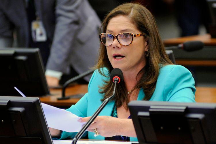 Reunião Ordinária. Dep. Soraya Santos (PMDB - RJ)