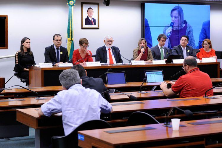 Audiência pública sobre a proteção dos direitos humanos de imigrantes e refugiados
