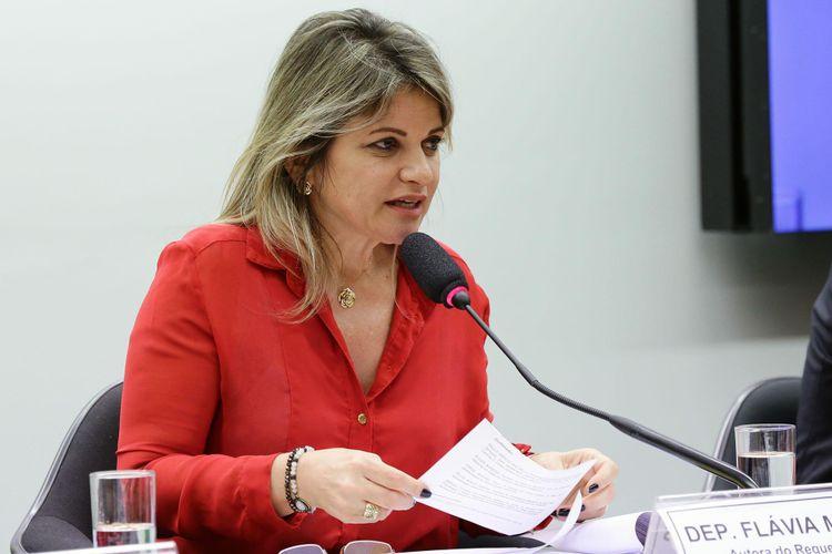 Subcomissão Especial para a Realização das Olimpíadas e Paralimpíadas de 2016. Dep. Flávia Morais (PDT - GO)