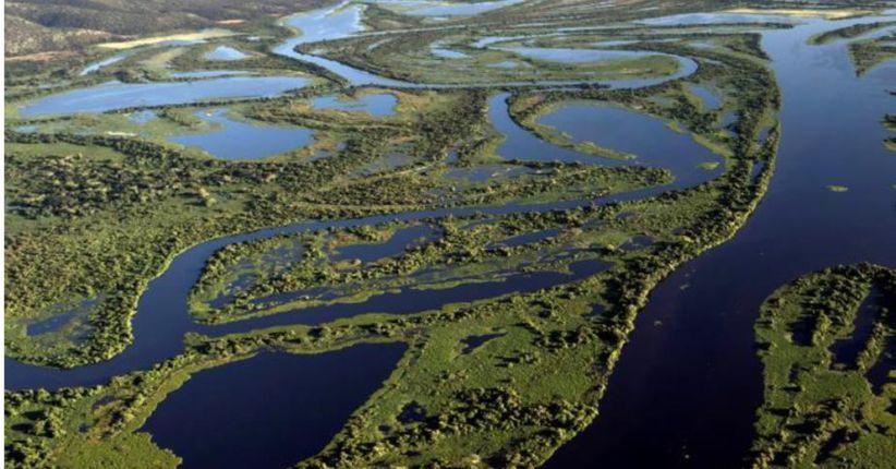 Pantanal ameaçado