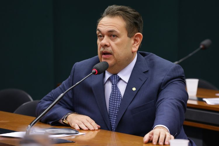 Reunião da Comissão Externa destinada a acompanhar a apuração e as ações vinculadas aos crimes de estupro em todo o território nacional. Dep. Silas Freire (PR-PI)