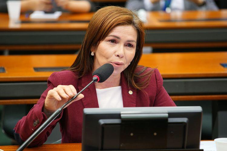 Audiência pública sobre o imposto sobre bebidas não alcoólicas adoçadas com açúcar. Dep. Conceição Sampaio (PSDB - AM)