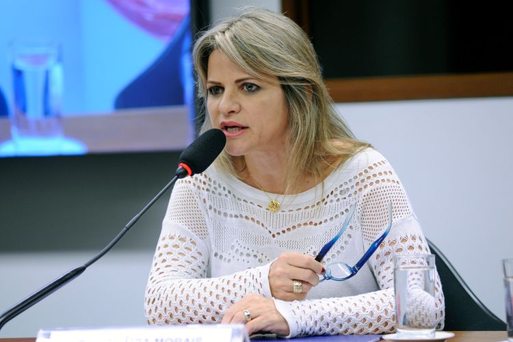 Audiência Pública. Dep. Flávia Morais (PDT - GO)