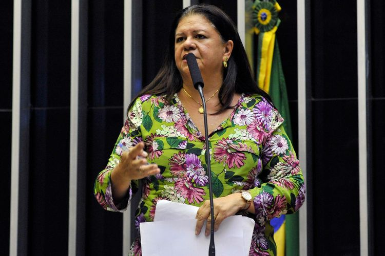 Ordem do dia para discussão e votação de diversos projetos. Dep. Laura Carneiro (S.PART. - RJ)