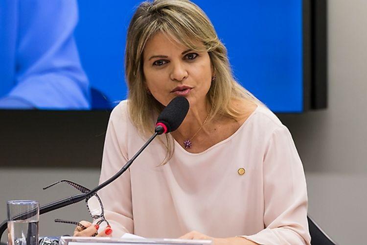 Visita Oficial da Delegação Italiana à Câmara dos Deputados - Dep. Flávia Morais