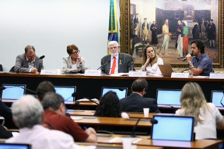 Audiência pública sobre uma agenda comum, neste contexto de austeridade, a fim de subsidiar a elaboração do plano de trabalho da Comissão e eventuais ações conjuntas com outras entidades