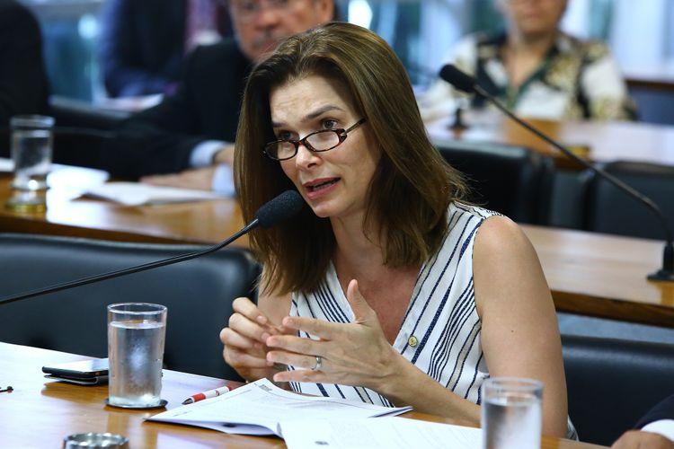 Reunião da Comissão Mista sobre a MP 744/16, que altera a estrutura da Empresa Brasil de Comunicação (EBC). Dep. Angela Albino (PCdoB-SC)