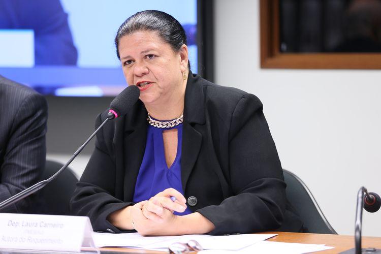 Audiência Pública da Comissão de Defesa dos Direitos da Pessoa Idosa - Dep. Laura Carneiro