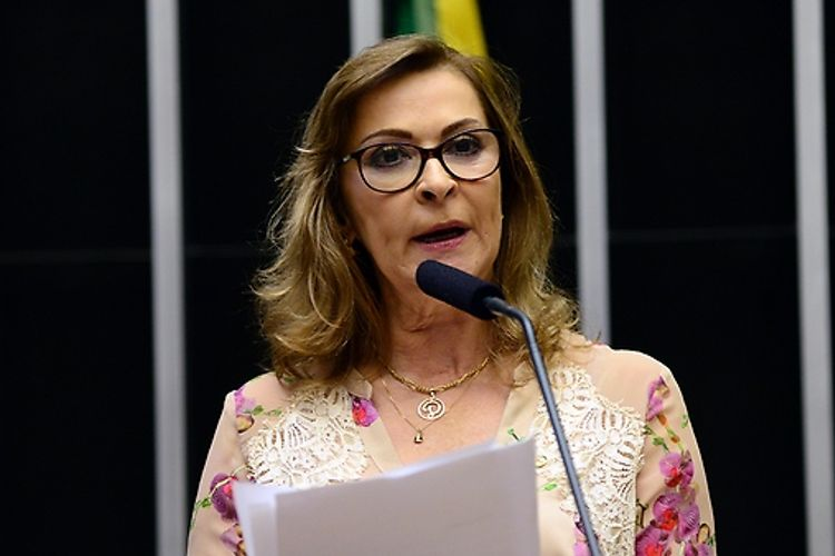 Sessão extraordinária para discussão e votação de diversos projetos. Dep. Dâmina Pereira (PMDB-MG)