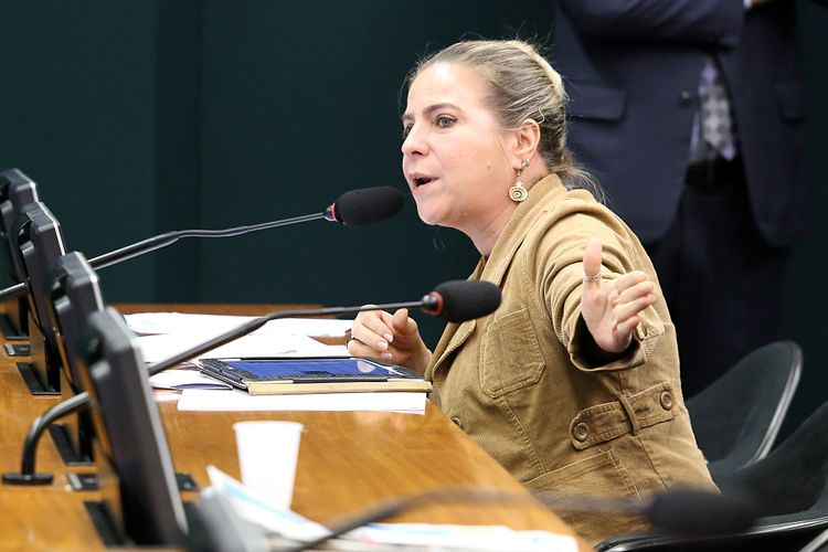 Audiência Pública. Dep. Luizianne Lins (PT-CE)