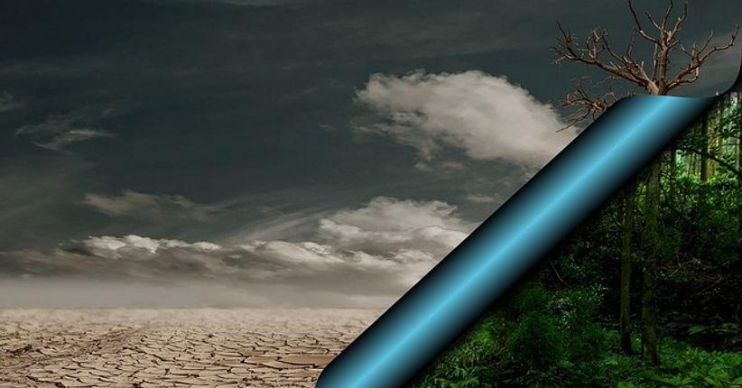 Polêmicas ambientais